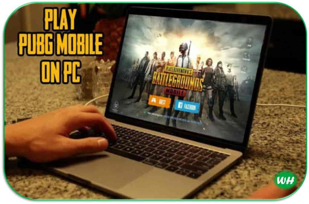 Pubg Pc Download Free For Windows 7810 Laptopcomputer Willhowdy